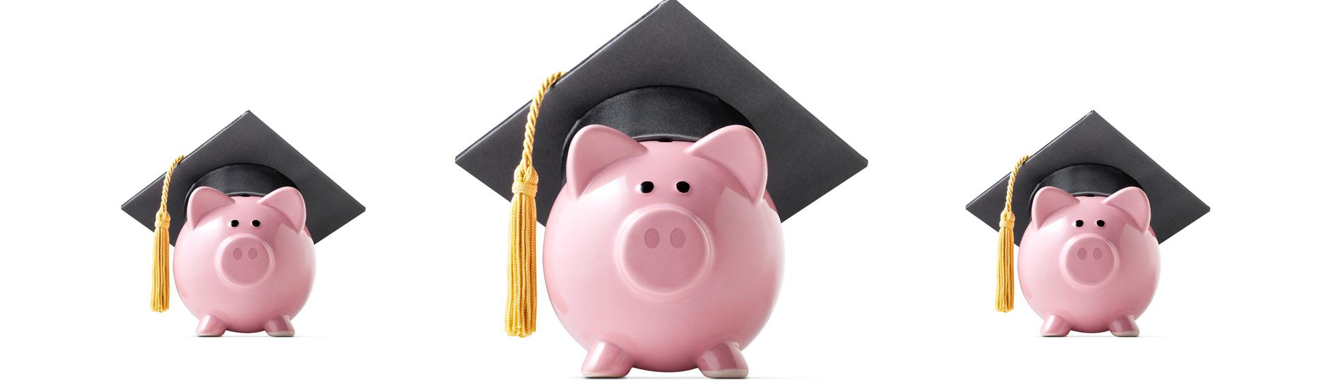 Kredyt studencki – tani i dostępny przez cały rok